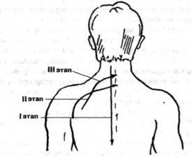 Судороги грудного отдела